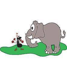 20171013222037-elefante-e-insecto.jpg